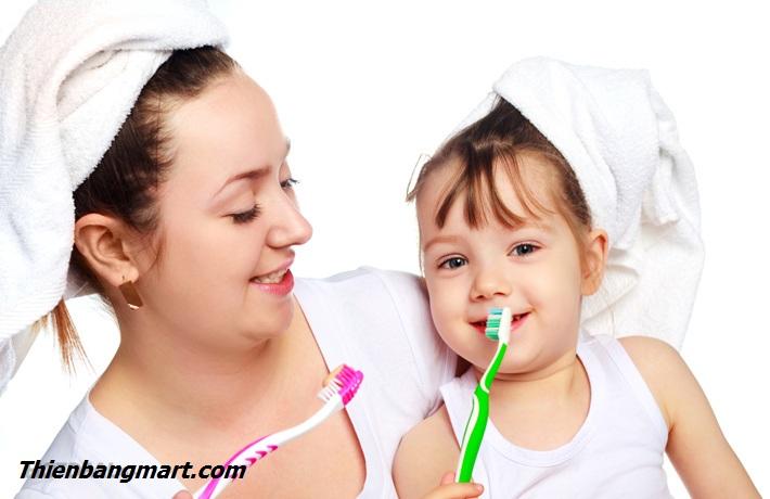 Hình Ảnh Dụng Cụ Nhả Kem Đánh Răng Tự Động 3 Cốc Của TB MART