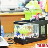 Bể Cá Mini Để Bàn Có Đèn Led cao cấp.