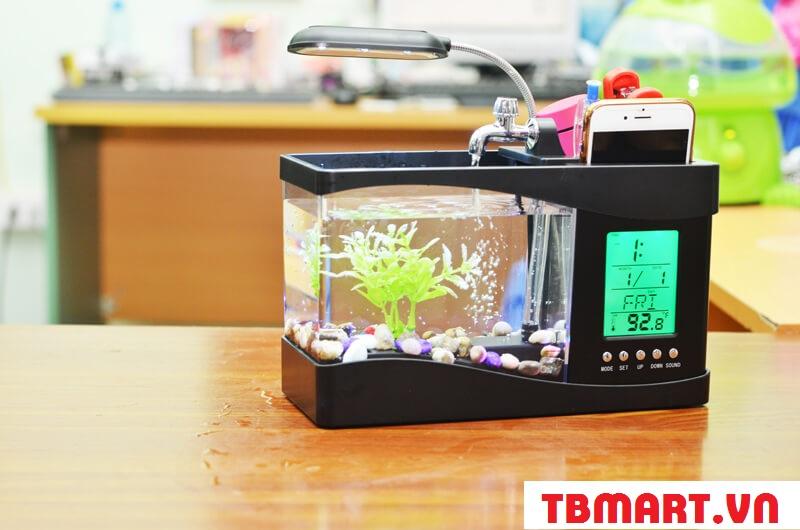 Bể Cá Mini Phong Thủy để bàn tuyệt đẹp.